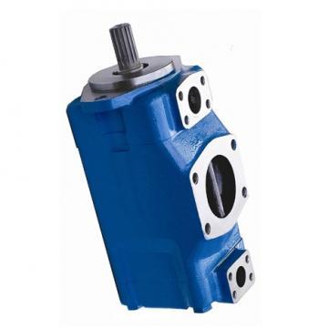 Vickers PV023R1E1AYVMFC+PGP505A030CA1H PV 196 pompe à piston