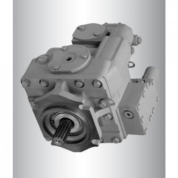 Vickers PV020R1K1T1NUPD+PVAPVV11N20 PV 196 pompe à piston