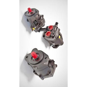 Vickers PV023R1K1AYNMMW+PGP511A0190CA1 PV 196 pompe à piston