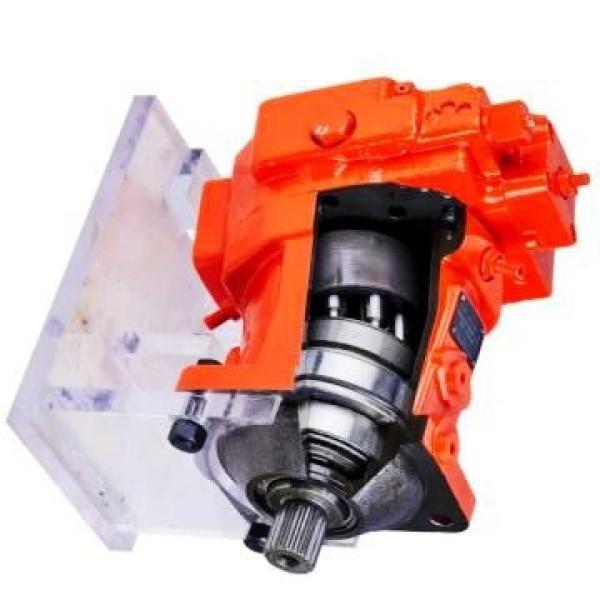 DAIKIN VZ50C34RHX-10 VZ50 pompe à piston #1 image