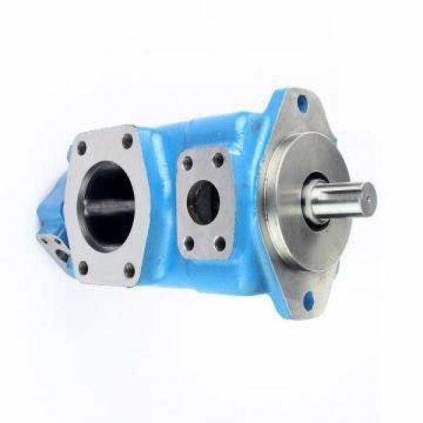 DAIKIN VZ63C13RHX-10 VZ63 pompe à piston #1 image