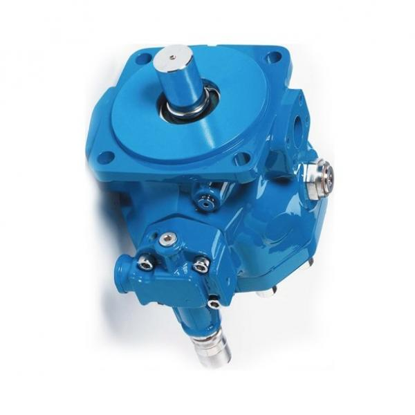Vickers 4535V60A38 86BA22R pompe à palettes #1 image