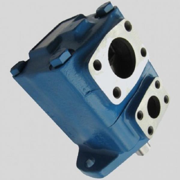 Vickers 4535V66A38 86CC20 26 pompe à palettes #1 image