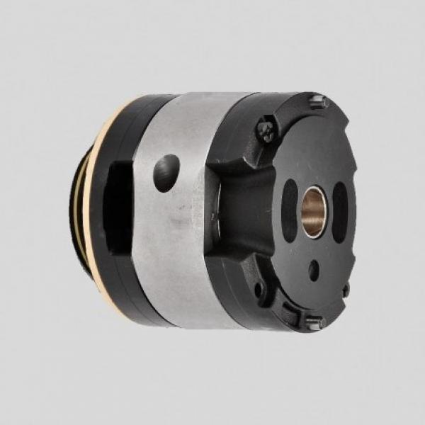 Vickers 4535V60A30 86BB22R pompe à palettes #1 image