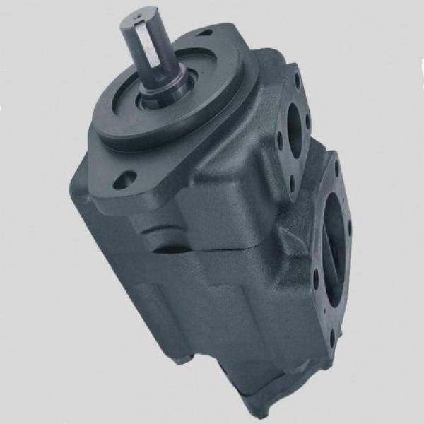 Vickers 4535V60A38 86BD22R pompe à palettes #1 image