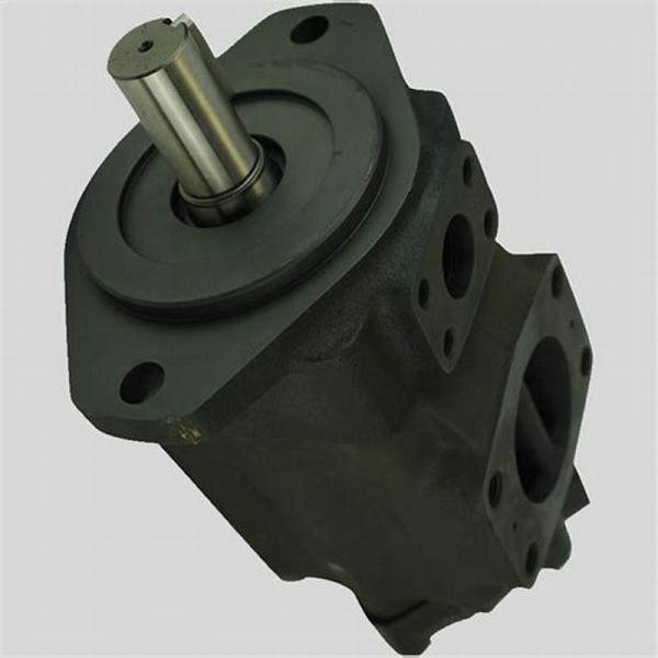 Vickers 4535V60A38 86BA22R pompe à palettes #2 image