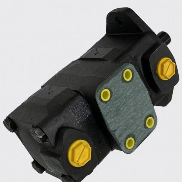 Vickers 4535V60A25 86BA22R pompe à palettes #1 image