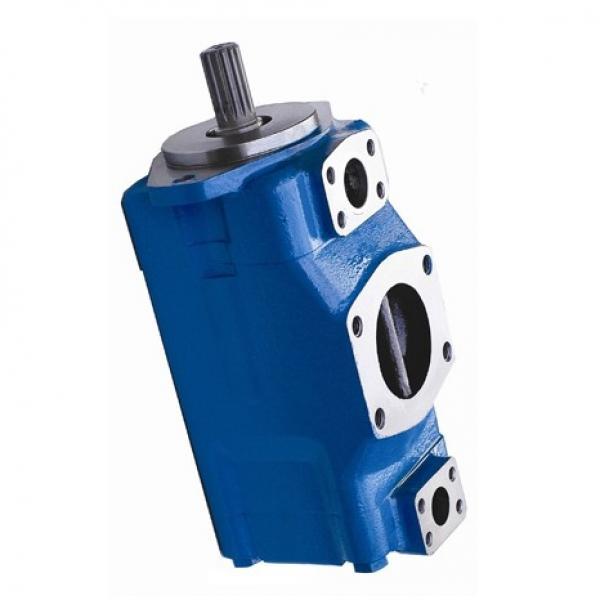 Vickers PV028R1K1T1NMMW4545 PV 196 pompe à piston #1 image