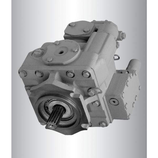 Vickers PV023R1K1AYNMRC4545 PV 196 pompe à piston #1 image