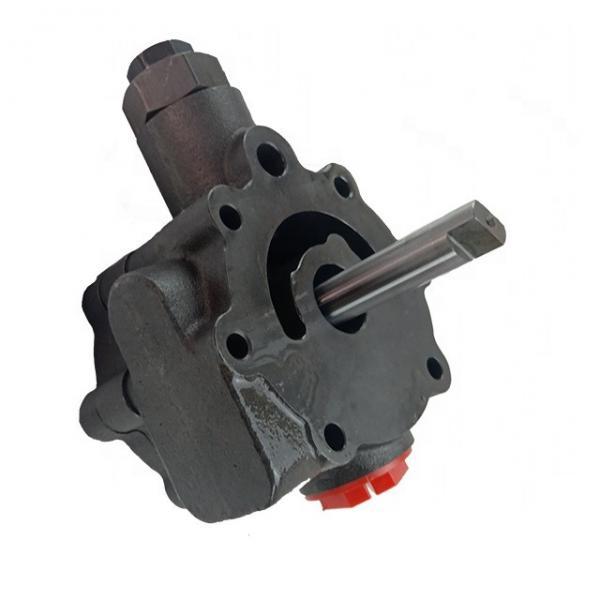 Vickers PV023R1K1JHN001+PV016R1L1T1NMM PV 196 pompe à piston #1 image